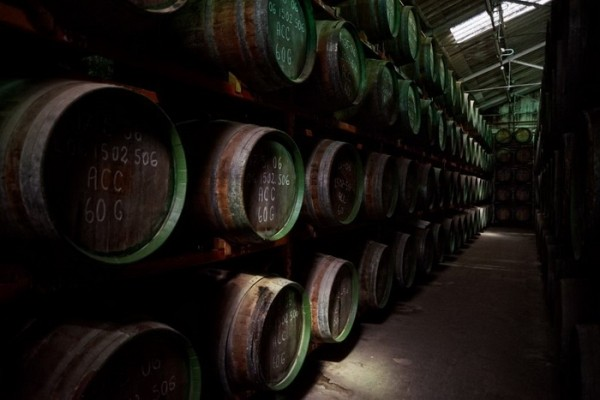 история виноделия