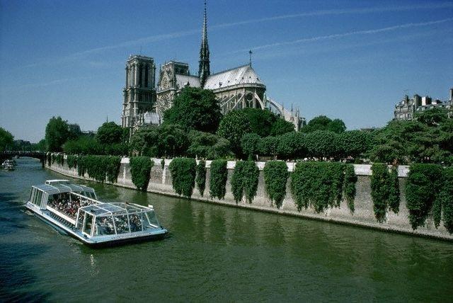 Остров Ситэ в Париже