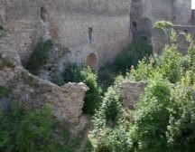 две крепости Нарвы