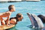 Top-Travel Отдых и развлечения