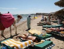 восстановление турпотока в Египет