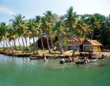 плантации в Гоа