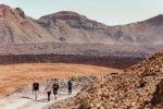 Экскурсия — Вулкан Тейде и страусиная ферма (Испания)