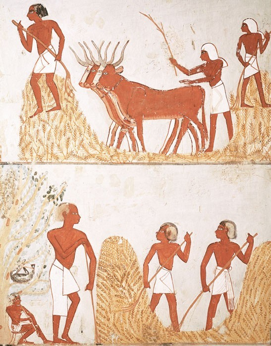 Особенности египетского рисунка