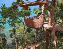 Ресторан на деревьях
