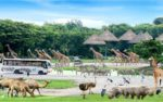Экскурсии в Таиланде — Сафари парк (Safari park) — Мир Сафари (Safari world)