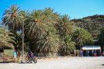 Экскурсии в Греции (о. Крит) — Пальмовый лес Ваи
